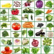 37 Variety Heirloom Vegetable Seeds